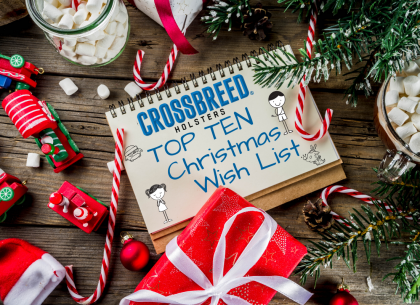 Here Are The Top Ten Things on Our Christmas Wish List This Year!